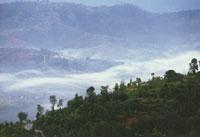 Туман утром в долине у Дуликеля